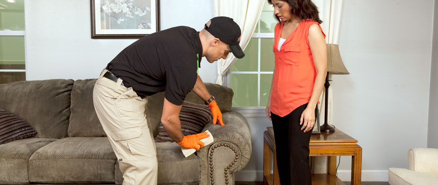 Newport News, VA carpet upholstery cleaning